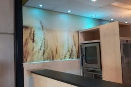 Wandprint in kleur Den Bosch